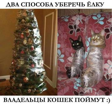 http://s9.uploads.ru/t/9JHpX.jpg