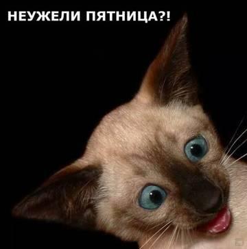 http://s9.uploads.ru/t/9OEQy.jpg