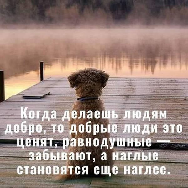 http://s9.uploads.ru/t/9VjeF.jpg