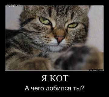 http://s9.uploads.ru/t/9XrIz.jpg
