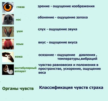 http://s9.uploads.ru/t/9h7rp.jpg