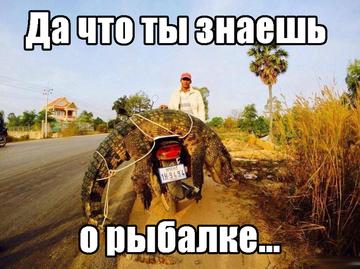 http://s9.uploads.ru/t/9sdMB.png