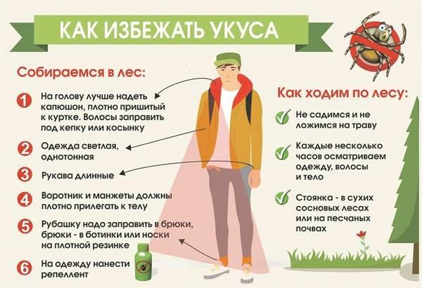 http://s9.uploads.ru/t/9tsWe.jpg