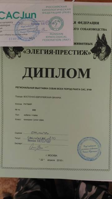 http://s9.uploads.ru/t/9wIqp.jpg