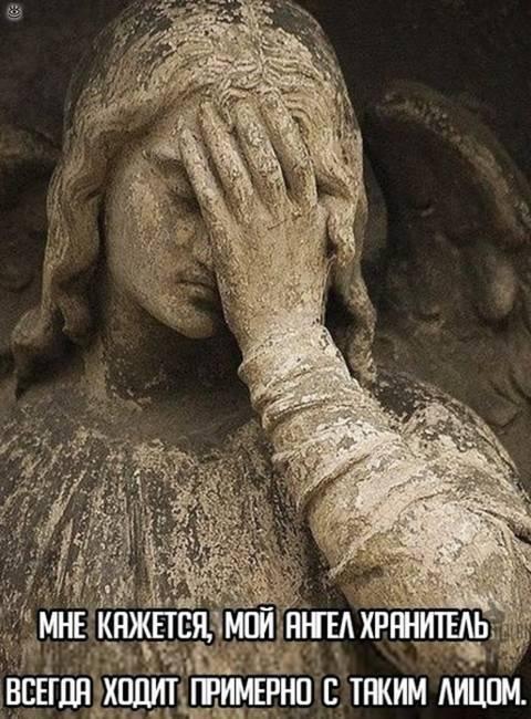 http://s9.uploads.ru/t/9wJNa.jpg