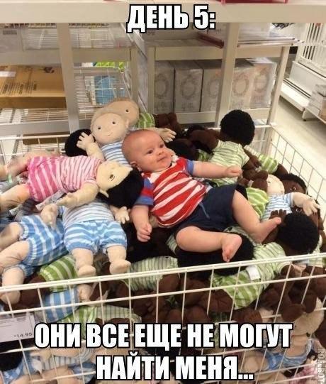 http://s9.uploads.ru/t/AfkD6.jpg