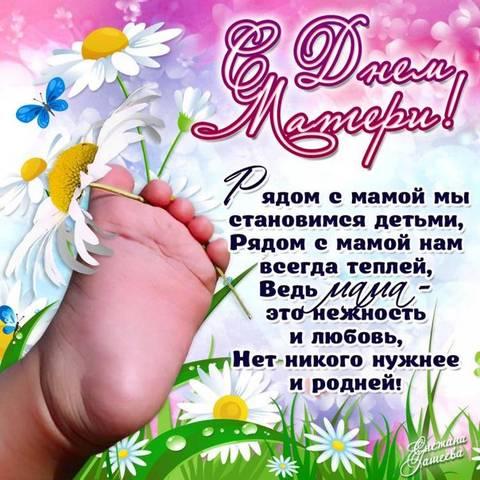 http://s9.uploads.ru/t/BIkWx.jpg