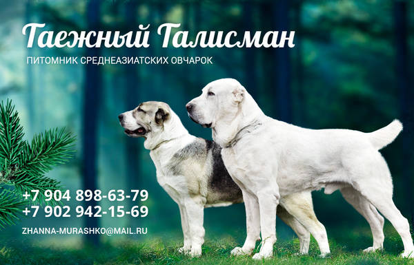 http://s9.uploads.ru/t/BstUv.jpg