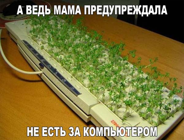http://s9.uploads.ru/t/C6knc.jpg