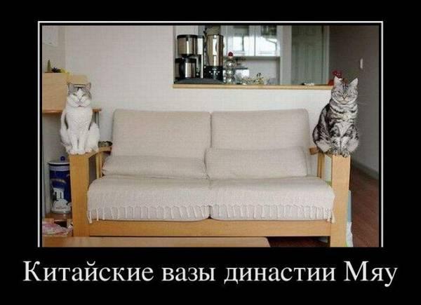 http://s9.uploads.ru/t/CNRfv.jpg