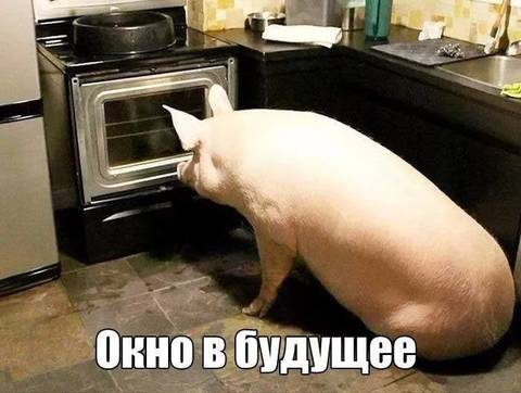 http://s9.uploads.ru/t/CYztP.jpg