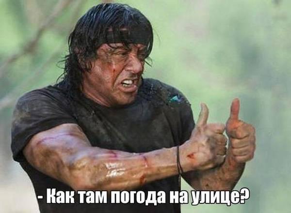 http://s9.uploads.ru/t/ChtxI.jpg