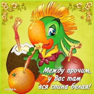 http://s9.uploads.ru/t/ClKnH.jpg
