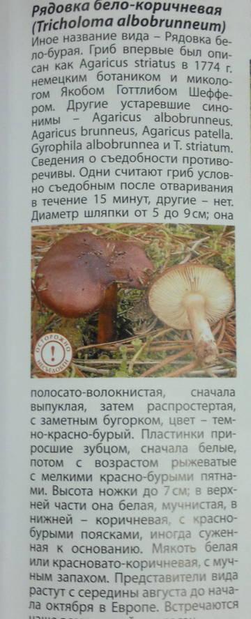 http://s9.uploads.ru/t/DctS1.jpg