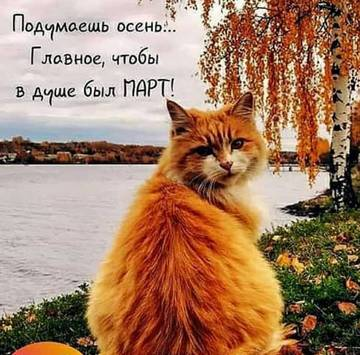 http://s9.uploads.ru/t/DdGFE.jpg