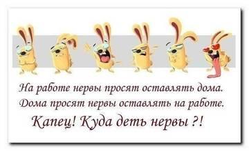 http://s9.uploads.ru/t/EWbfd.jpg
