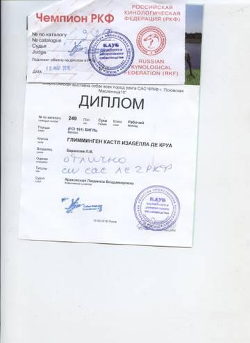 http://s9.uploads.ru/t/EcM3g.jpg