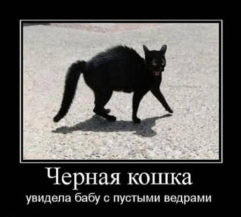 http://s9.uploads.ru/t/Er07e.jpg