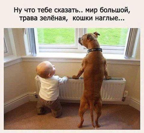 http://s9.uploads.ru/t/FP7ou.jpg
