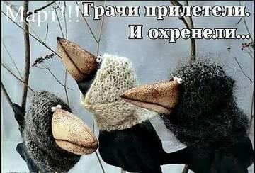 http://s9.uploads.ru/t/FmuWz.jpg