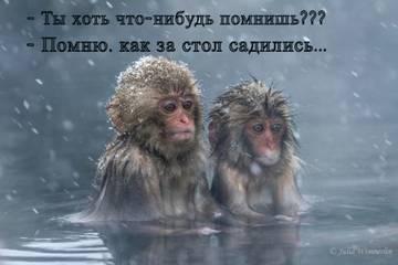 http://s9.uploads.ru/t/GOIMl.jpg