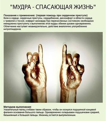 http://s9.uploads.ru/t/GRV1T.jpg