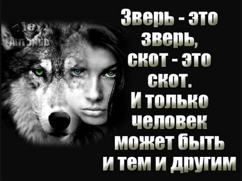 http://s9.uploads.ru/t/GcIeY.jpg
