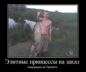 http://s9.uploads.ru/t/Gnuzl.jpg