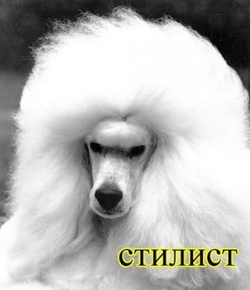 http://s9.uploads.ru/t/Gtsb7.jpg