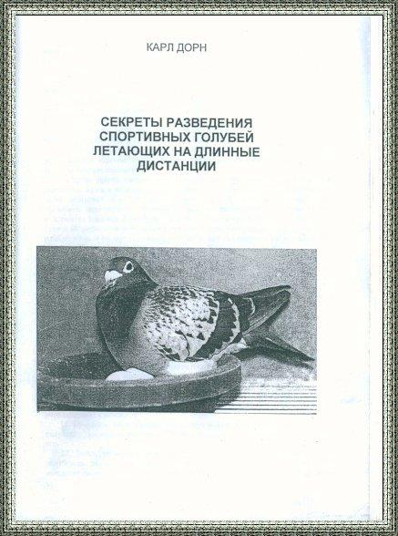http://s9.uploads.ru/t/H7IZ2.jpg
