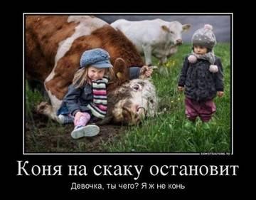 http://s9.uploads.ru/t/HwTSD.jpg