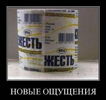 http://s9.uploads.ru/t/I2yUG.jpg