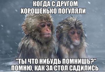 http://s9.uploads.ru/t/I9ZBY.png