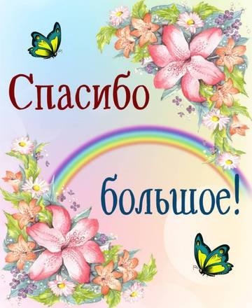 http://s9.uploads.ru/t/ICzXH.jpg
