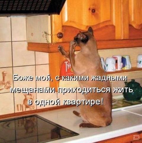 http://s9.uploads.ru/t/IFc9p.jpg