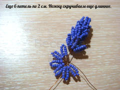 http://s9.uploads.ru/t/IJaWk.jpg