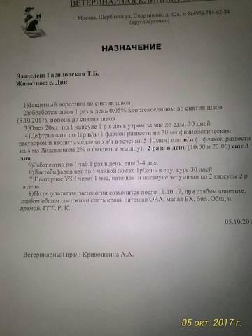 http://s9.uploads.ru/t/Iohvn.jpg