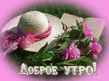 http://s9.uploads.ru/t/JCFvD.jpg
