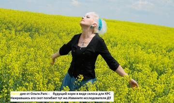 http://s9.uploads.ru/t/JgT6V.jpg