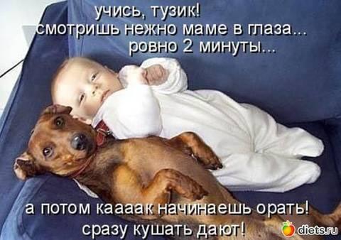 http://s9.uploads.ru/t/JhApC.jpg
