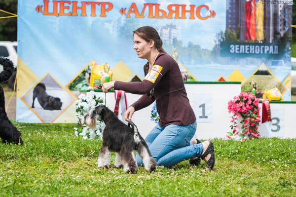 http://s9.uploads.ru/t/Jmj84.jpg