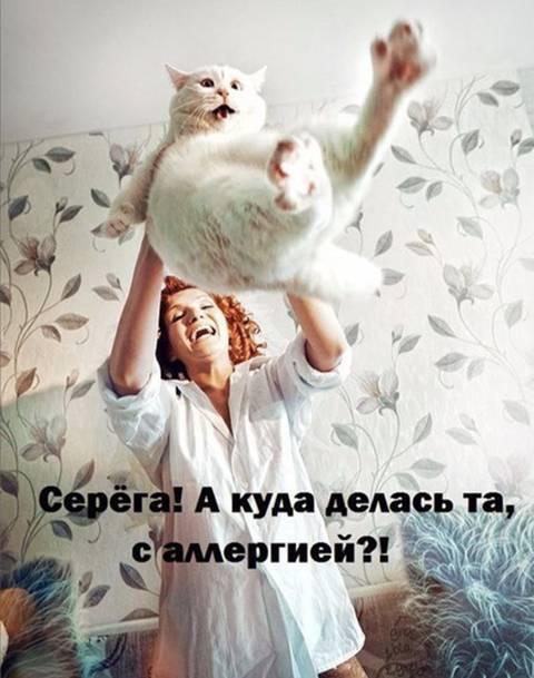 http://s9.uploads.ru/t/JtH9h.jpg