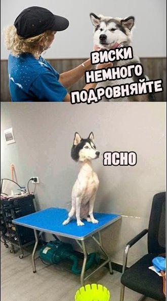http://s9.uploads.ru/t/L7so0.jpg