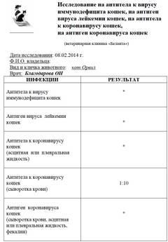 http://s9.uploads.ru/t/LFmYQ.jpg