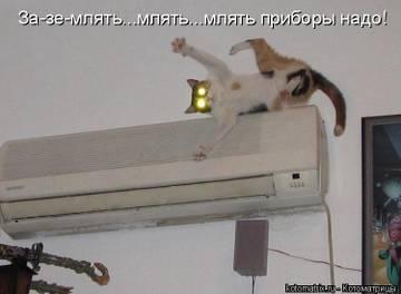 http://s9.uploads.ru/t/LKIlp.jpg