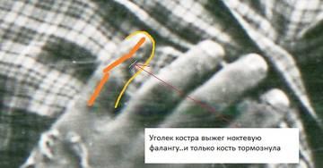 http://s9.uploads.ru/t/LanAm.jpg