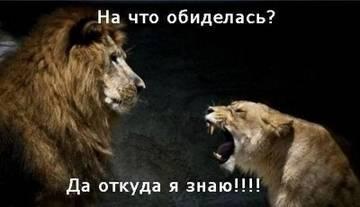 http://s9.uploads.ru/t/Mug4P.jpg