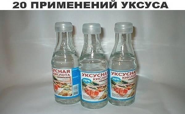 http://s9.uploads.ru/t/N5mTj.jpg