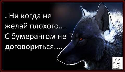 http://s9.uploads.ru/t/N7V8X.jpg