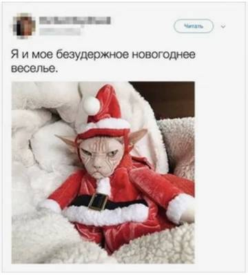 http://s9.uploads.ru/t/NPIHB.jpg